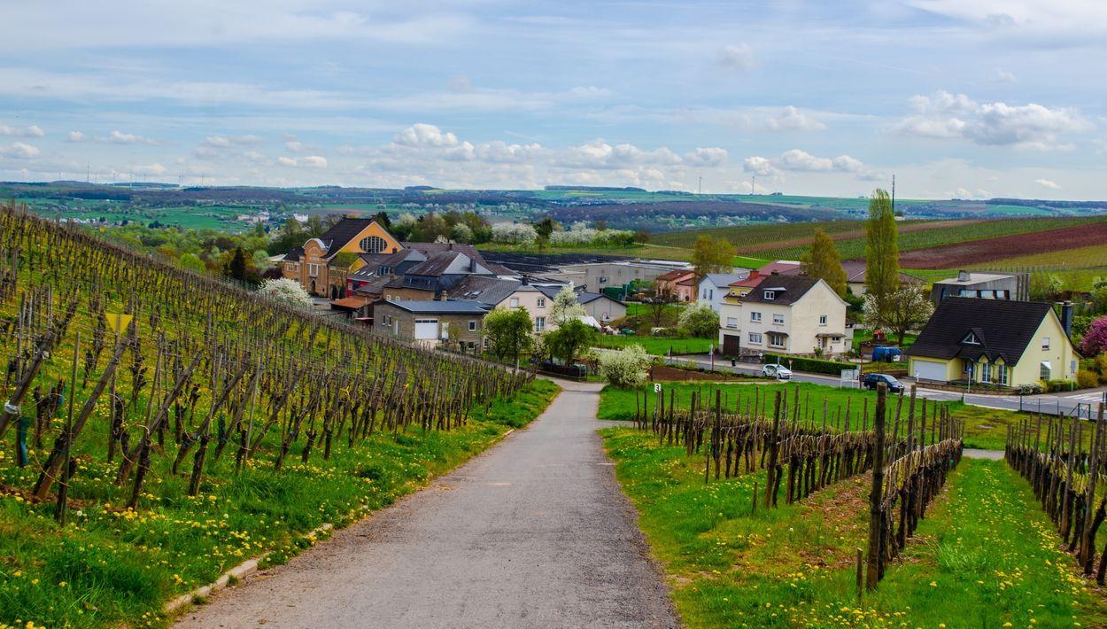 Luxemburg Moselle Door trabantos