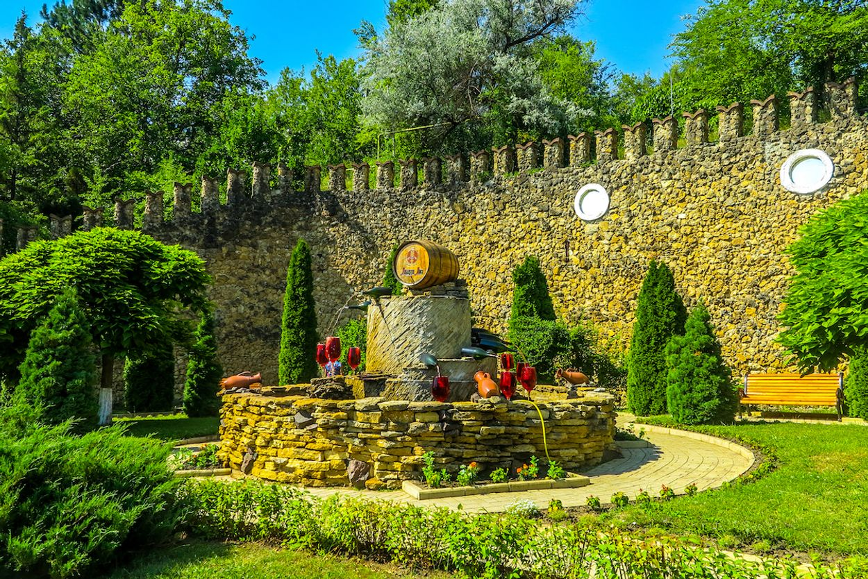 Wijngaard Moldavië