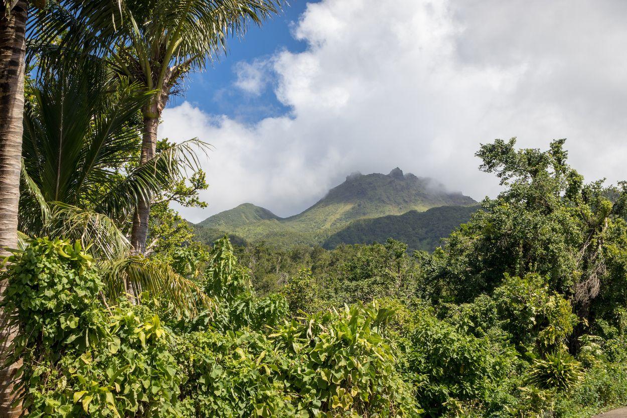 Mountain view Guadeloupe