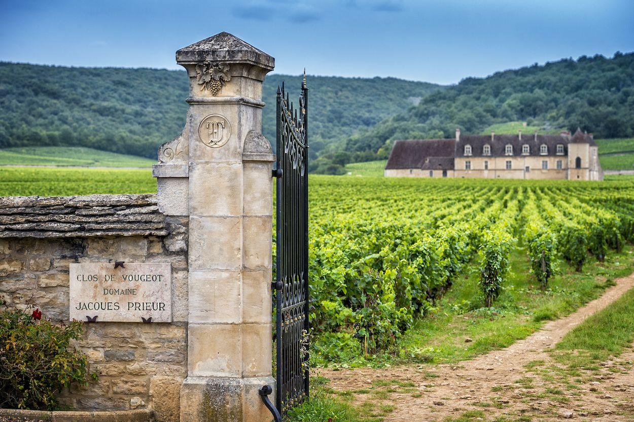 Afbeelding van Het Franse Bourgondië biedt meer dan de fameuze wijnen
