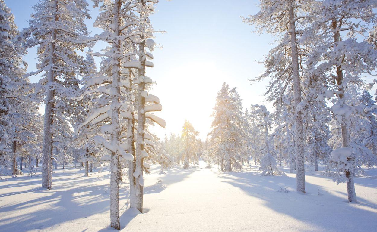 noord-finland.jpg