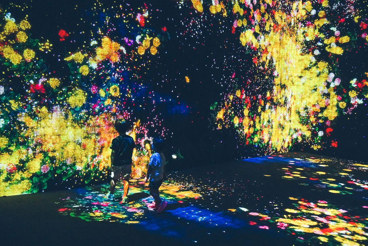 Mori Digital Art Museum door mujiri2