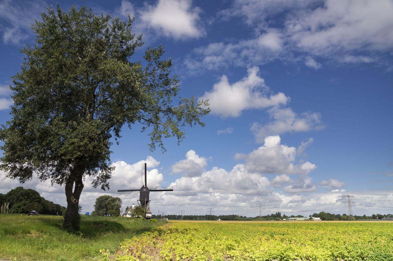 Landschap Hoeksche Waard Door jstuij