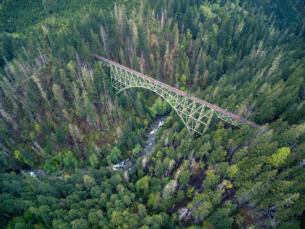 Vance creek bridge 3