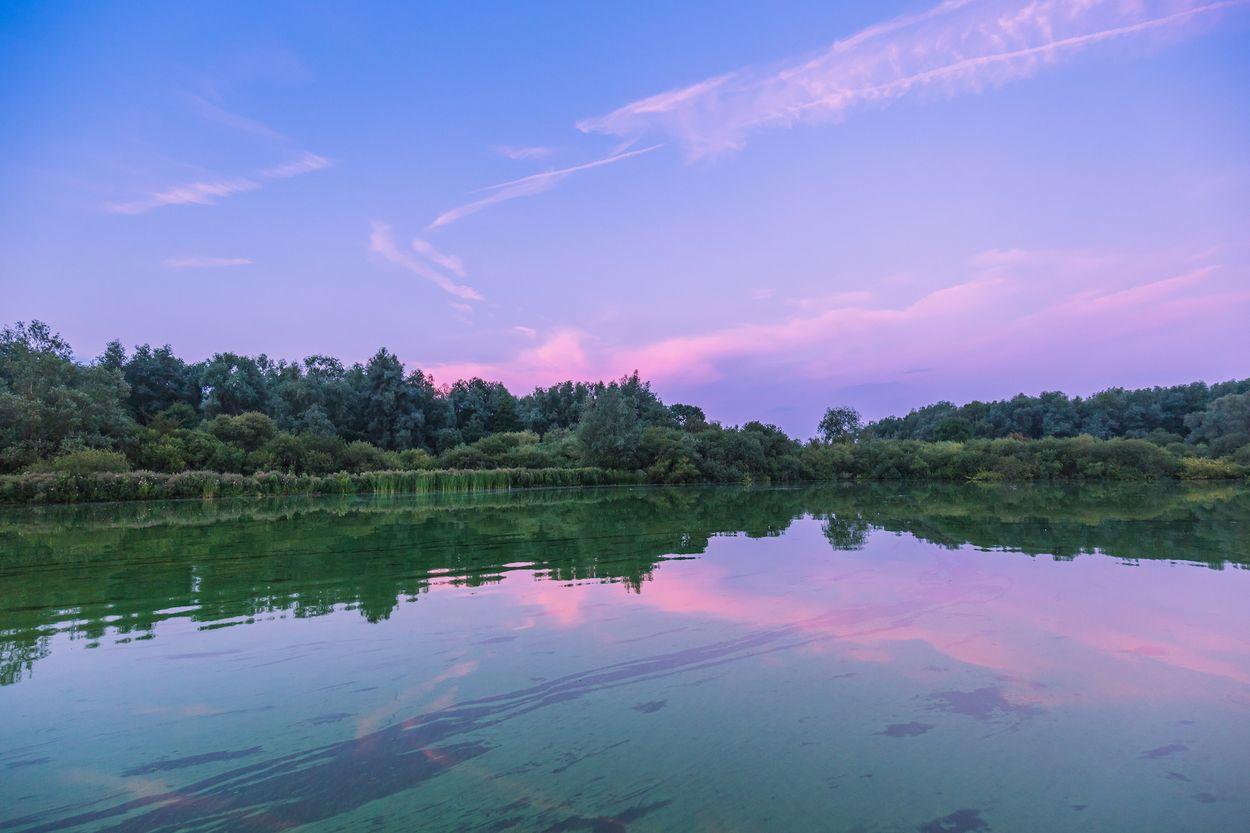 Afbeelding van Tips dichtbij huis: zoals deze onverwachte oase middenin de Randstad