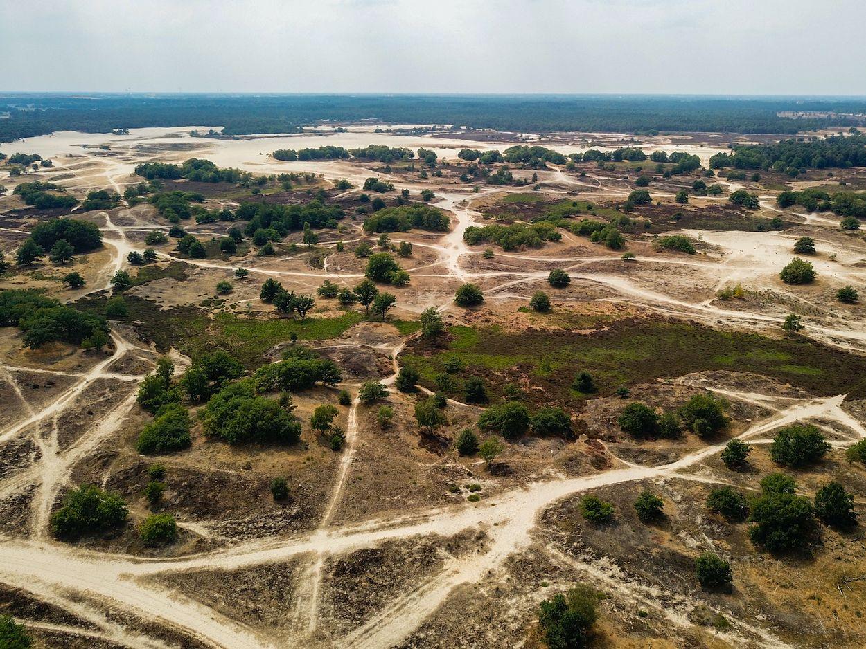 Afbeelding van Zomerse verademingen: de nationale parken van Nederland