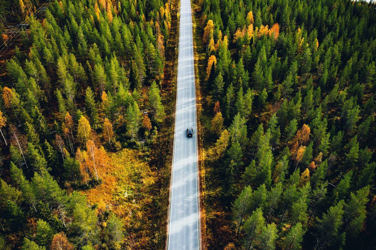 Afbeelding van Reisadvies Finland, Estland en Litouwen aangepast