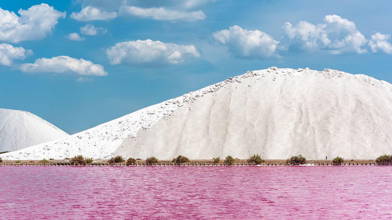 Aigues-Mortes Door Pascale Gueret