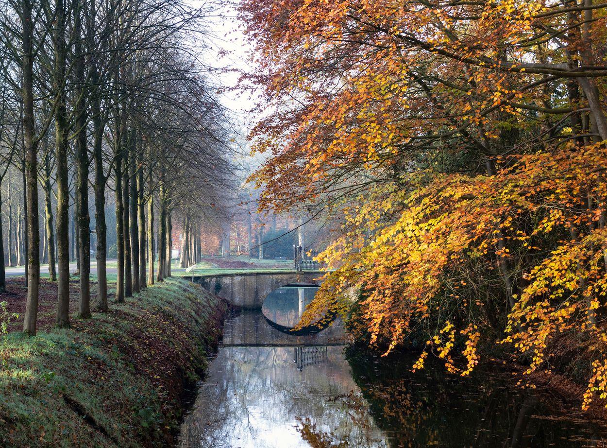 Oranjewoud Door Franke de Jong