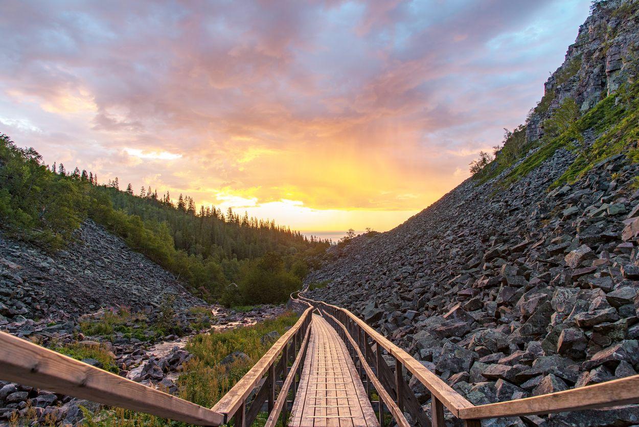 Afbeelding van Wildkamperen tussen de oerbossen van Zweden: Fulufjället National Park