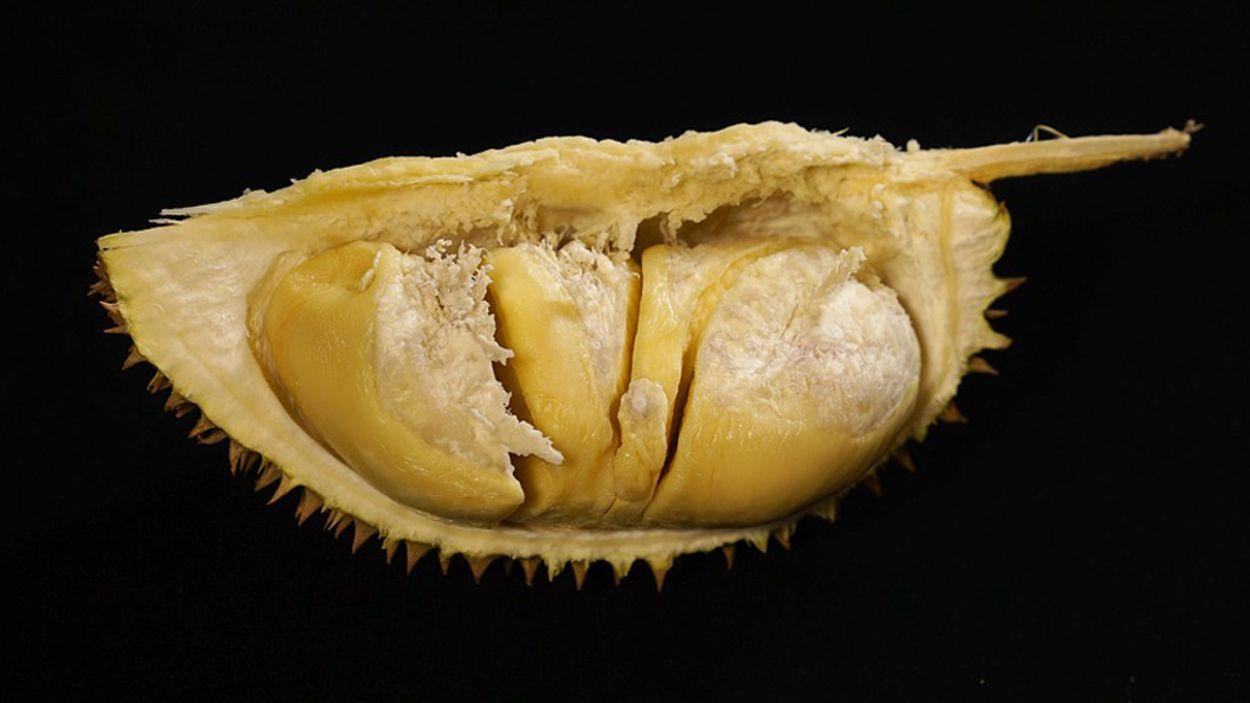 xlthumb_binnenkant_durian