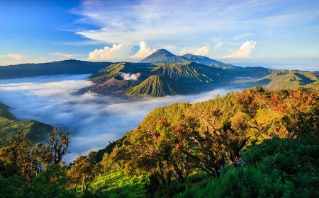 Afbeelding van Indonesië