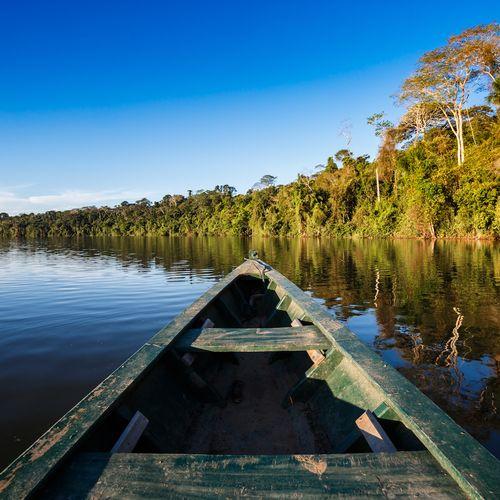 Afbeelding van Dit land is een koning als het gaat om biodiversiteit