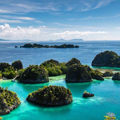 Afbeelding van Dit zijn de alternatieven voor Bali
