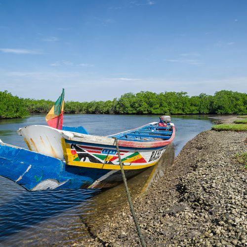 Afbeelding van Senegal en Gambia: een route van drie weken