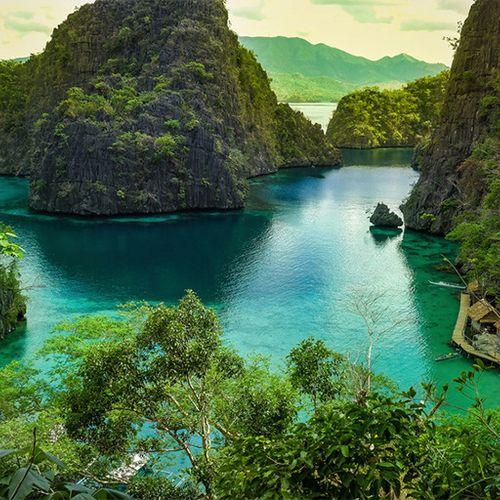 Afbeelding van Wegdroomparel van de week: Palawan